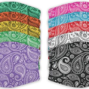 Variety of Coloured Paisley – Face Masks – 2 Filters Included