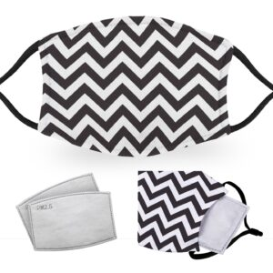 Chevron – Reusable Adult Face Masks – 2 Filters Included