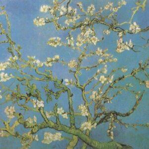 Almond Flower, Saint-Remy Van Gogh VG700 Repro Art Print A4 A3 A2 A1