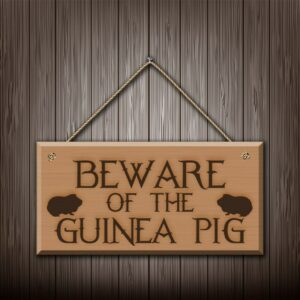 Beware Of The Guinea Pig – Engraved wooden wall plaque/sign