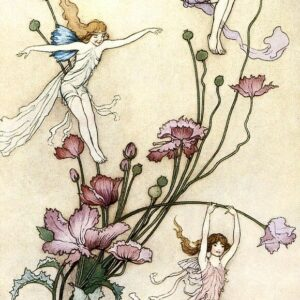 A2 Size Illistrated Vintage Fairy Warwick Goble 1920 Picture printed on Canvas