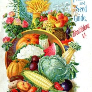 Allen Vintage Seed Cover Picture Art Print Poster A4 A3 A2 A1