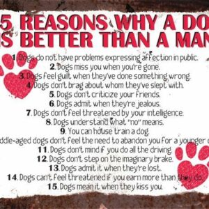 15 Reasons Why A Dog Is Better Than A Man – Vintage Metal Wall Sign