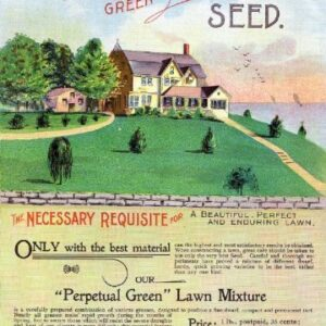 "Barnard's ""Perpetual Green"" Lawn Grass Vintage Seed Back Cover Picture SC005 Matt Satin Canvas A4 A3 A2 A1"