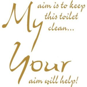 TOILET SEAT STICKER DECAL QUOTE MY AIM IS TO KEEP THIS TOILET CLEAN IN 30 COLOURS 21cm x 22cm (Gold)